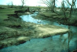 floodRestoration-riparian